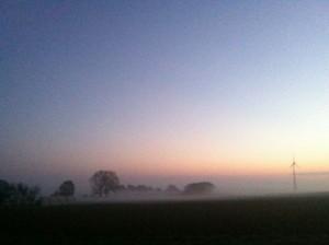 Nebel überm Feld