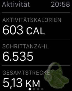 Am Ende des Tages lag ich 1500 Schritte über meinem Ziel