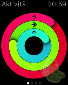 Kurz nach dem Mittagessen war ich mit meinen drei Ringen schon durch